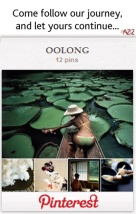 AZIZ Salon and Day Spa Zents Oolong Pinterest Journey