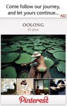 AZIZ Salon and Day Spa Zents Oolong Pinterest Journey