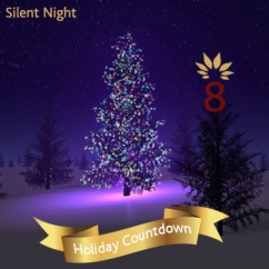 day 8 silent night